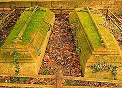 Moss Galore! (springblossom3) Tags: chipping campden church graves moss nature churchyard history religion