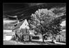 Rocamadour (elc13600) Tags: noir blanc bw rocamadour lot france europe blackandwhite white black village ciel sky arbre tree alina awesometrees