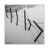Barbed Wire Fence (Paul Compton (PDphotography)) Tags: fog mist tree weather barbed wire fence reflection mirror