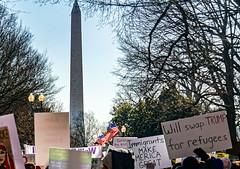 2017.02.04 No Muslim Ban 2, Washington, DC USA 00410