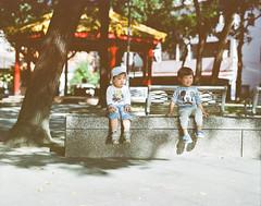 怯生生 (Waynele) Tags: film 120 120film pentax pentaxcamera pentax6x7 pentax67 pentax67ii 67ii 67 6x7 filmcamera filmphoto filmphotography filmphotograph kodak kodakfilm taiwan life pentaxflickraward 105mm f24 kodakportra 中判カメラ
