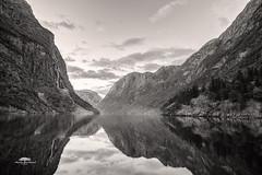 Gudvangen Monochrome (huddart_martin) Tags: gudvangen nærøyfjord aurland fjord norway norge mountains waterfall sea water reflections blackandwhite blackwhite monochrome scenic landscape nature sonya99