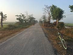 Myanmar, Ayeyarwady Region, Maubin District, Maubin Township, Ma Let To Village Tract (Die Welt, wie ich sie vorfand) Tags: myanmar bicycle cycling bike surly steamroller ayeyarwadyregion ayeyarwady irrawaddy maubindistrict maubin delta irrawaddydelta maubintownship maletto