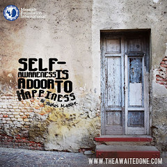 Quote of the Day: Self-Awareness is a Door... (Mehdi/Messiah Foundation International) Tags: happiness happy innerpeace lettering quote quoteoftheday quotes selfawareness selfrealisation selfrealization typography wisdom wisewords younusalgohar