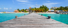 DSC_0758 (Attila C.) Tags: mexicana mexico sand nikon heaven paradise coconut palm caribbean nikkor mujeres isla coconutpalm islamujeres vivamexico caribbeansea whitesandybeach nikond5100