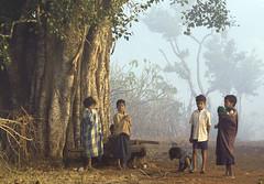 Children in the morning fog (wietsej) Tags: children maikal india bhoramdeo kawardha chhattisgarh sonyalphadslr sony zeiss 135 100 alpha a100 sonnar 13518 za wietsejongsma wietse jongsma