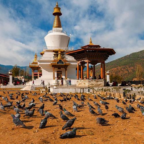 #memorial #stūpa #Thimphu #Bhutan (March 2010) #pidgeons