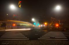 Bus 3:45am (Ed Kiley) Tags: nyc fog brooklyn night prospectpark eerie