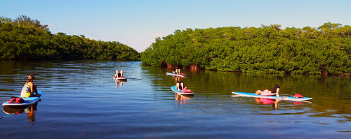 11_30_15 Paddleboard Yoga in Lido Mangroves FL 13