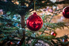 [ M E R R Y - X M A S ] (ElleFlorio) Tags: merry xmas christmas tree ball decoration red happy holiday chateau chillon montreux switzerland travel reflections lucaflorio