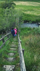 ... Steps and a Bridge ... Grass Outdoors Rural Scene Green Color Freshness Countryside People Walking River Stream Wales Summer Lush Green мостик ступеньки трава деревня лето (Linandara) Tags: steps bridge grass outdoors ruralscene greencolor freshness countryside people walking river stream wales summer lush green мостик ступеньки трава деревня лето