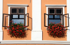 Two Windows (Alan1954) Tags: windows two flowers slovenia 2016 skofjaloka holiday platinumpeaceaward