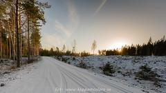 20170113099686 (koppomcolors) Tags: koppomcolors håltebyn värmland varmland sweden sverige scandinavia