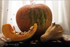 Proyecto 17/365 (Art.Mary) Tags: bodegón stilllife naturemorte canon proyecto365 calabazas citrouilles pumpkins alimento food aliment vegetales vegetables légumes