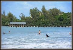 DSC_0868 November 14, 2016, the pier at Hanalei Bay, Kaua'i, Hawai'i (steveto2645) Tags: pier hanaleibay kauai hawaii