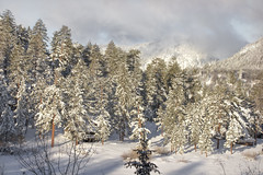 Storm is Over (Exdeltalady) Tags: outdoor snow storm bigbearlake bigbear ca san bernadino mountains lake winter winterscenery view