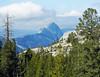 The Round Side of Half Dome, Yosemite NP 2015 (inkknife_2000 (7 million views +)) Tags: easternsierranevadas yosemitenationalpark california usa landscapes mountains dgrahamphoto granite granitemountains olmstedpoint halfdome tiogaroad