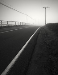san diego : foggy road (William Dunigan) Tags: san diego southern california mountains foothills street fog minimalism black white photography low light