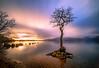 Milarrochy Bay Sunset (Rendeification) Tags: nikon d750 irix 15mm f24 loch lomond milarrochy bay haida long exposure