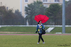 "Mobile ""dish antenna"" (JOAO DE BARROS) Tags: action rugby sports humor people umbrella girl joão barros"