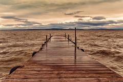 Embarcador a la gola de Pujol (Ximo Torres) Tags: albufera valència