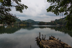 Kandy lake (runovv) Tags: srilanka india sky clouds kandy city sacred mountains water lake tree trees animals birds forest blue green landscape