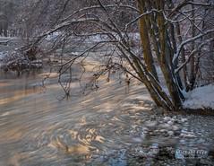 0217-1750.jpg (Michael Frye) Tags: mercedriver california usa winter sierranevada nationalpark yosemitenp alder places snow