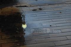 Riflessi (emanuelad1) Tags: riflessi light rain pioggia pozzanghera photostreet photograper nikon d3300 reflex puddle reflection