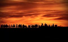 Burning sky (djjonatan) Tags: italia italy europa europe flickr explore stream sunset tramonto burning sky cielo fiamme fuoco campagna countryside alberi trees veneto verona jonatan djjonatan74 photo photography pic day end wonderful view vista panorama amanecer nikon d7200
