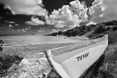 TIFFANY.....in time. (rienschrier) Tags: old strand zwartwit blackandwhite beach wrak boat wrack
