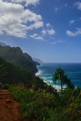View of the Na Pali Coast from the  Kalalau Trail (5 of 10) (jficke13) Tags: kauai hawaii napalicoast