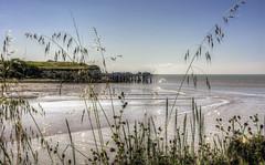 les carrelets ... (Roberto Defilippi) Tags: france landscape francia paesaggio rodeos gironde foce estuario carrelets greenscene nikond7100 robertodefilippi 201571