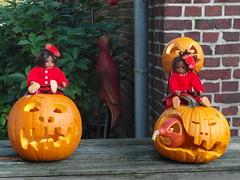 Gute Aussicht ... (Kindergartenkinder) Tags: pumpkin dolls annette kürbis himstedt kindergartenkinder leleti
