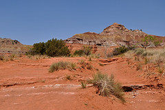 Palo Duro Canyon - Red Country (Drriss & Marrionn) Tags: red cliff usa nature rock landscape texas outdoor hill canyon soil mountainside paloduro rockformation crag palodurocanyon drysoil redsoil