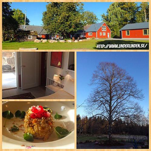 Vi besöker #Hotell och #Restaurang #Underlinden mellan #Munkaljungby och #Örkelljunga Här serveras delikat #Danskt #Julbord och är väl värt ett besök. Läs mer på. http://www.underlinden.se