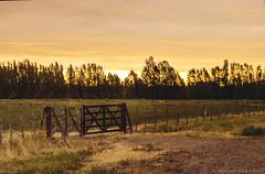 atardecer de verano (Alexis Retamal!) Tags: sunset sol atardecer tranquera crepusculo ocaso chacra