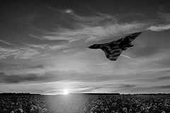 POP047 (Smart Aviation Art) Tags: poppy poppies poppyfield poppyfields lancaster vulcan avro spitfire hurricane aircraft military bbmf