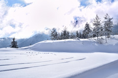 Relaxing winter view (Adnan T.) Tags: winter view wintertime winterwonderland wintermoments snow snowy day outdoor outdoors travel mountain mountains mountainlife nature landscape landscapephotography nikon nikonphotography bynikon clouds white naturephotography photographer photography bosnia trebevic sarajevo amazing winterlovers shot capture pic picture photo daily cold freezing freeze lovely