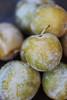 Greengage Plum (HirokiYamamoto1987) Tags: greengage plum fruit
