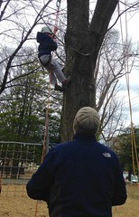 Adult looks up as boy climbs tree (Montgomery Parks, MNCPPC) Tags: treeclimbing woodsidepark january2017 2017