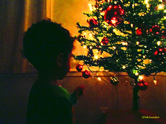 Boy & Christmas Tree #painting (Stephenie DeKouadio) Tags: canon painting christmas christmastree light lights darkandlight art artistic child children boy kids love lovely