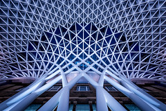 Tangled - London (Christopher Pope Photography) Tags: web kingscross nikon wwwchristopherpopephotographycom chrispope abstract architecture nikond610 christopherpopechristopherpopephotography fineart christopherpopephotography london