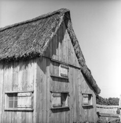 102659 06 (ndpa / s. lundeen, archivist) Tags: nick dewolf nickdewolf october bw blackwhite photographbynickdewolf 1959 1950s film 6x6 mediumformat monochrome blackandwhite mass massachusetts plymouth plimoth plantation plimothplantation museum livinghistorymuseum building roof thatch thatchroof thatchedroof house home architecture windows shutters