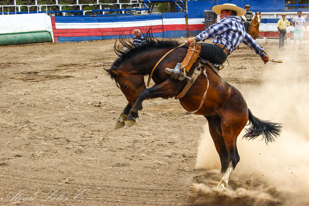 The World's Best Photos of huaso and rodeo - Flickr Hive Mind