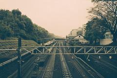 Harajuku Station (bwilliamp) Tags: tokyo 日本 東京 japan harajuku trainstation mornings harajukustation shibuya yamanoteline meijishrine yoyogipark takeshitastreet