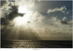 When the sun breaks through the clouds (nandOOnline) Tags: water natuur wind almere sunlight zonlicht wolken clouds paard van marken zonnestralen landschap zuiderzee sunrays meer ijsselmeer storm