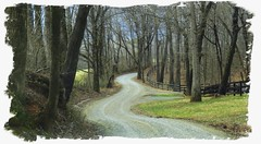 the road less traveled (Hayseed52) Tags: road gravel country winter trees dirtroad outdoors