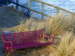 Windy seat
