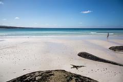 this summer (Keith Midson) Tags: binalongbay eastcoast tasmania beach samyang 14mm australia summer bayoffires