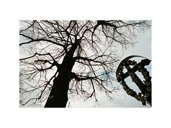 Thy Kingdom Come (michal_zilinsky) Tags: analog film 35mm negative kodak portra 400 nature landscape inovec považský slovensko slovakia jesus tree cross inri outdoor